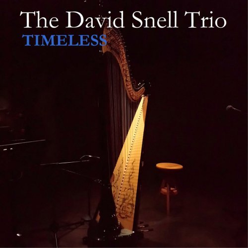 timeless   david snell trio